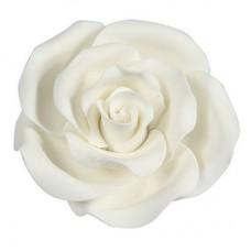 63mm White Sugar Soft Roses Pk/8