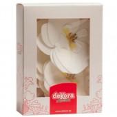 Dekora White Wafer Orchids Box/10