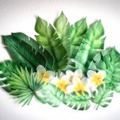 Crystal Candy Tropical Wafer Leaves & Flowers Pk/22