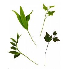 FMM Foliage Allsorts Set of Tappits