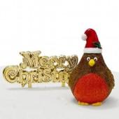 Plump Christmas Robin Resin Cake Topper & Motto