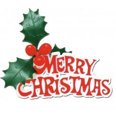 Merry Christmas Holly Motto