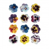 SugarSoft® Pansies Box 60