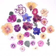 Crystal Candy Pressed Wafer Flowers Pk/40