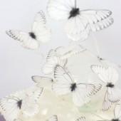 Crystal Candy Snow Wafer Butterflies Pk/22