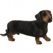 Short-haired Dachshund Dog Topper