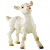 Kid Goat Topper
