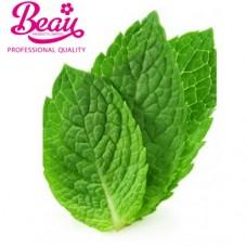 Beau Peppermint Flavour