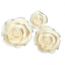 Mixed Ivory Sugar Soft Roses Pk/12