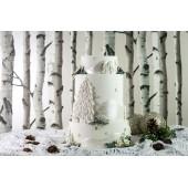 Karen Davies Winter Wreath Mould