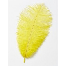 Yellow Ostrich Feathers Pk/2