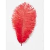 Red Ostrich Feathers Pk/2