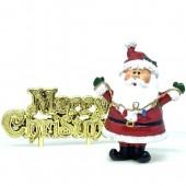 Fun Santa with Lights Resin Cake Topper & Motto