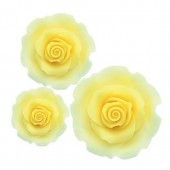 Mixed Ombre Yellow Sugar Soft Roses Pk/12