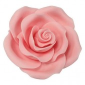 63mm Light Pink Sugar Soft Roses Pk/8
